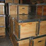 apicola-miel-fuente-sol-008