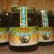 apicola-miel-fuente-sol-024