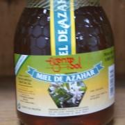 apicola-miel-fuente-sol-048