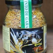 apicola-miel-fuente-sol-074