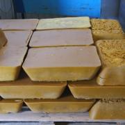 apicola-miel-fuente-sol-161
